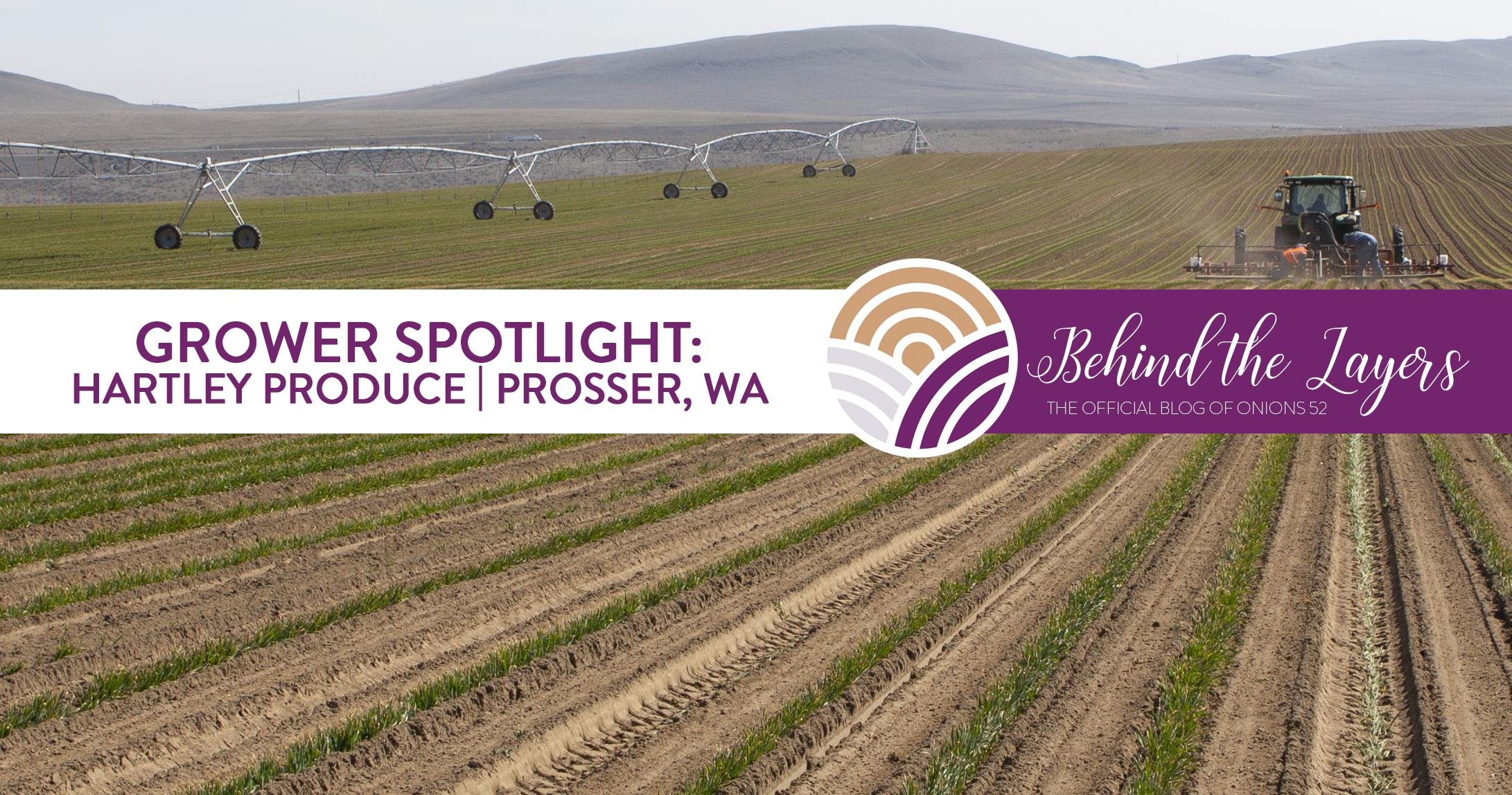 Grower Spotlight: Hartley Produce