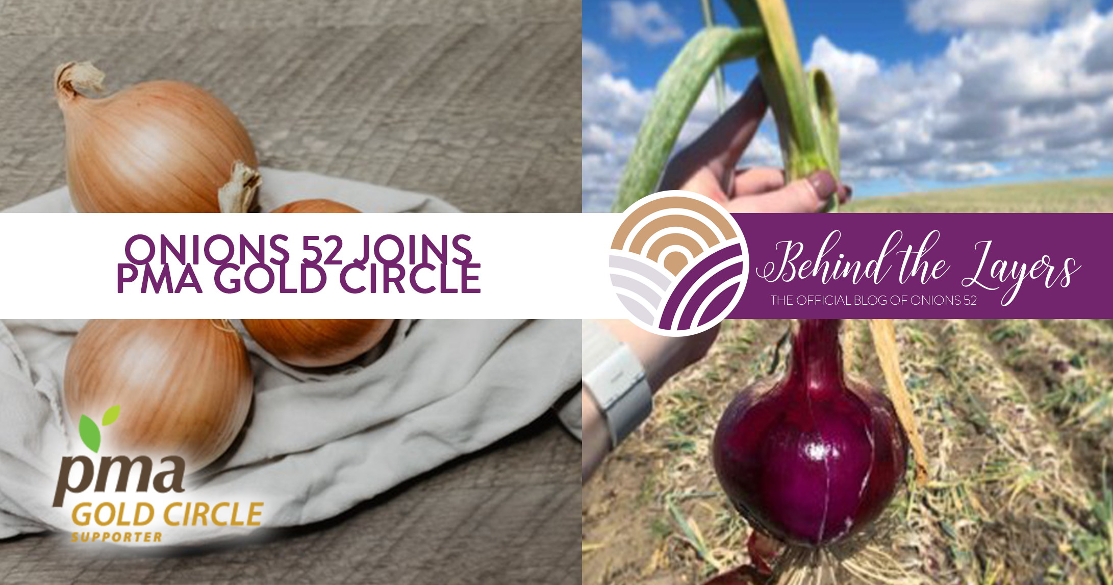 Onions 52 Joins PMA Gold Circle Campaign For Food Safety